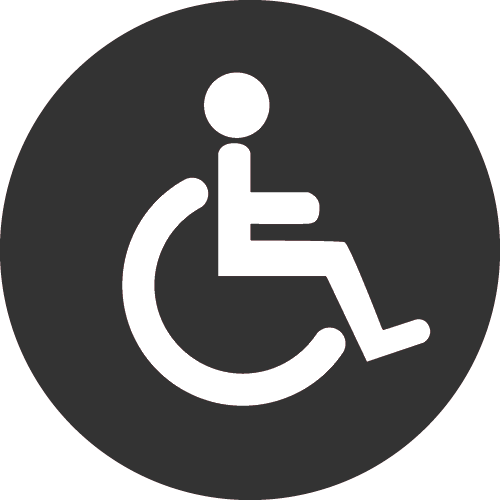 Persons with Disabilities Icon